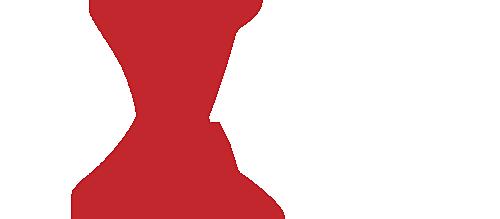 Dataplane Acceleration Developer Day logo